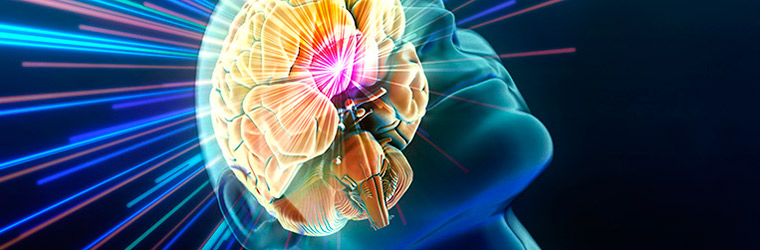 superimposed brain over a virtual face