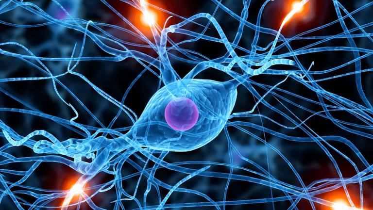 Research | Department of Neurology | Georgetown University