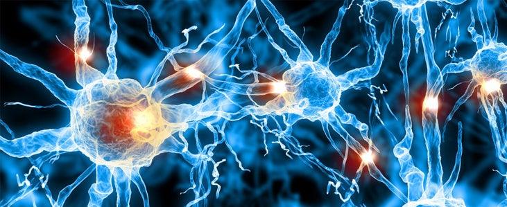 Neurons firing.